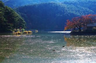 千鹿頭池 深秋