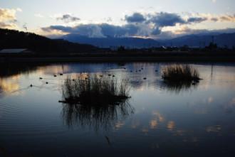千鹿頭池初冬