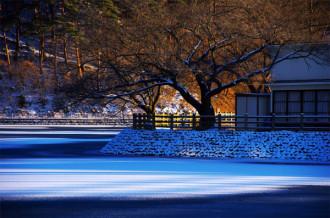 千鹿頭池初雪