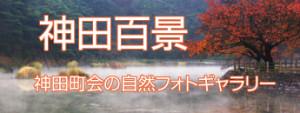 神田町会フォトギャラリー