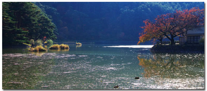 秋の千鹿頭池
