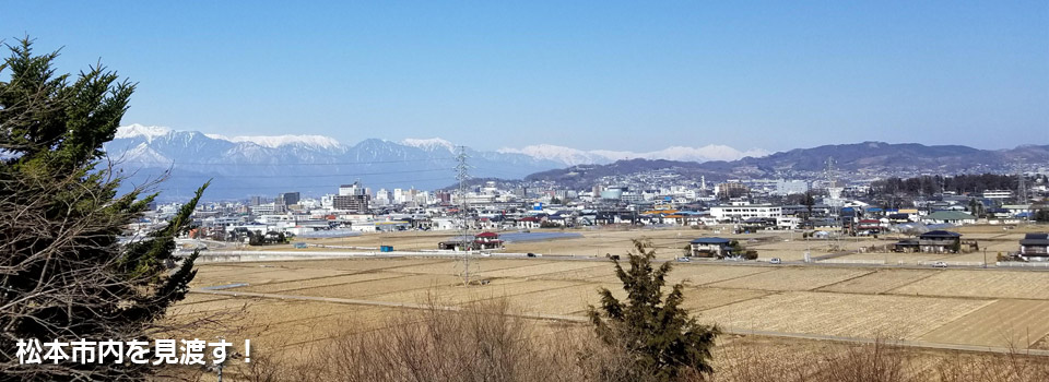 松本市内を望む