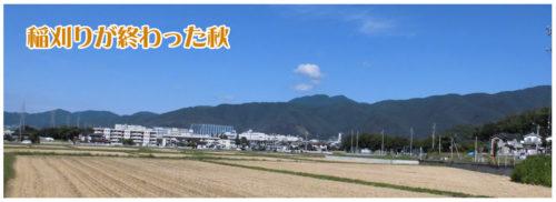 秋の神田町会